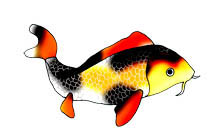 Koi Fish clipart #8, Download drawings