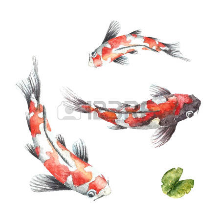 Koi clipart #15, Download drawings