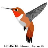 Kolibri clipart #14, Download drawings