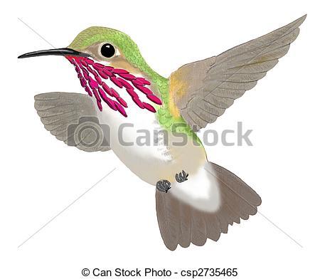 Kolibri clipart #3, Download drawings