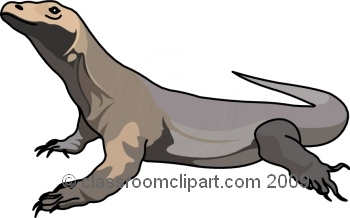 Komodo Dragon clipart #12, Download drawings