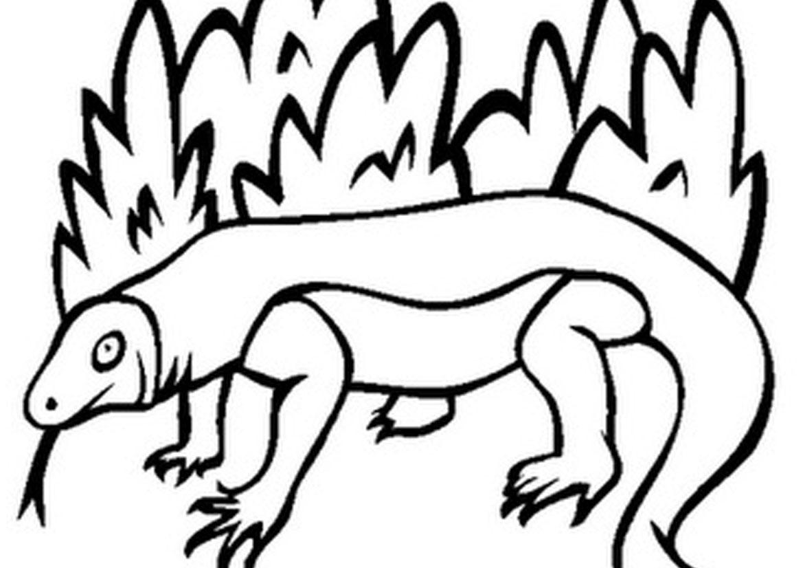 Komodo Dragon clipart #2, Download drawings