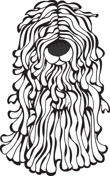 Komondor clipart #2, Download drawings