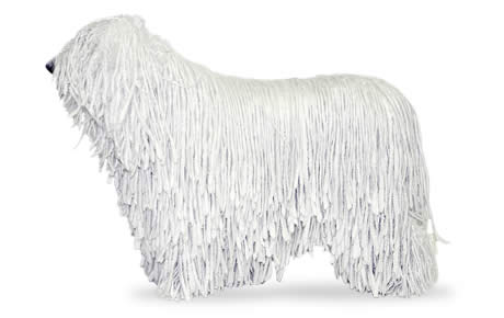 Komondor clipart #18, Download drawings