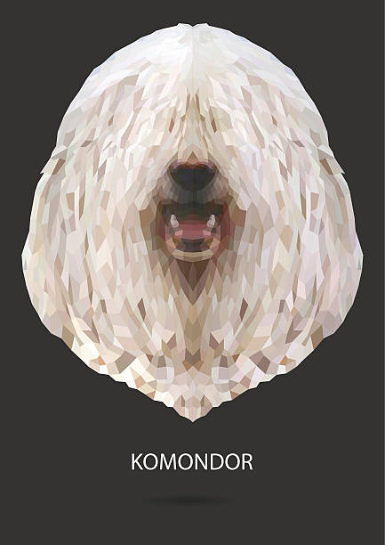 Komondor clipart #16, Download drawings