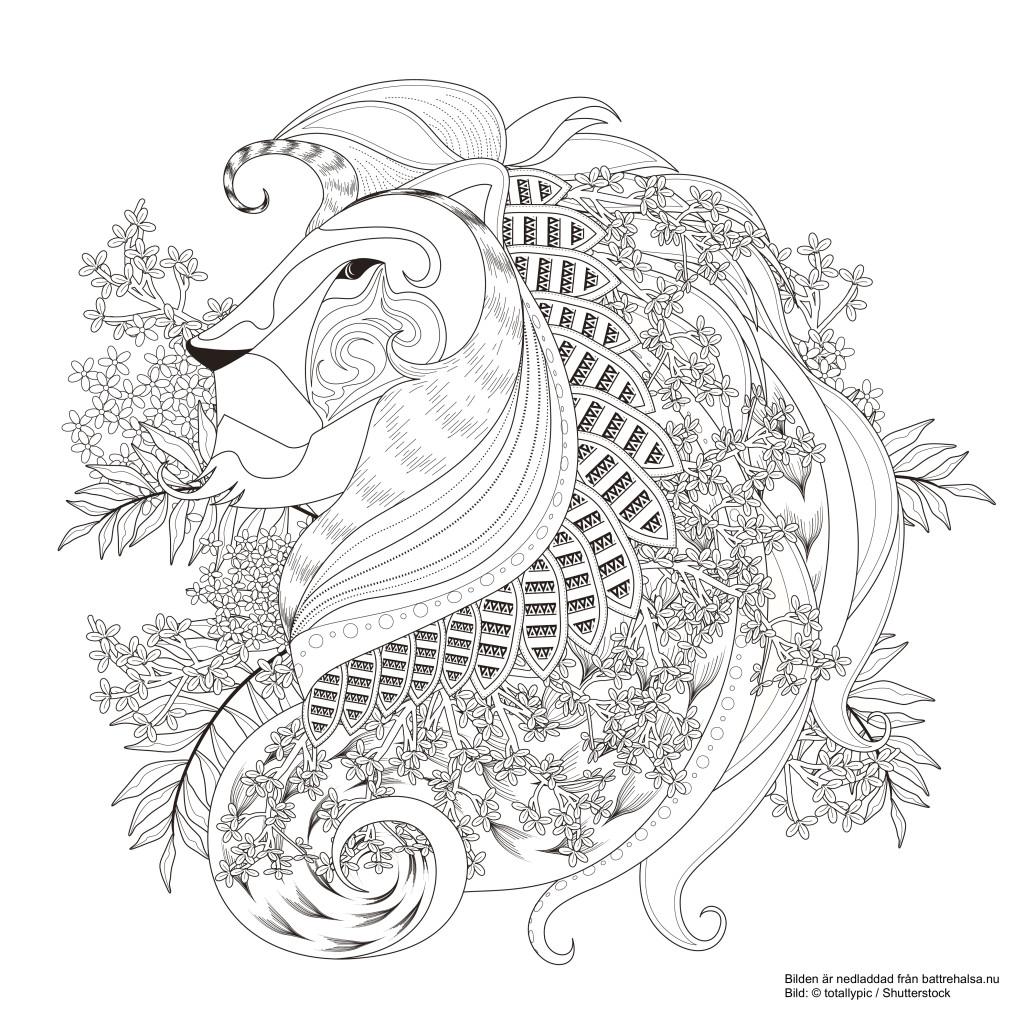 Konung coloring #14, Download drawings