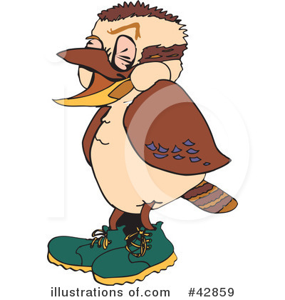 Kookaburra clipart #15, Download drawings