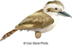 Kookaburra clipart #14, Download drawings