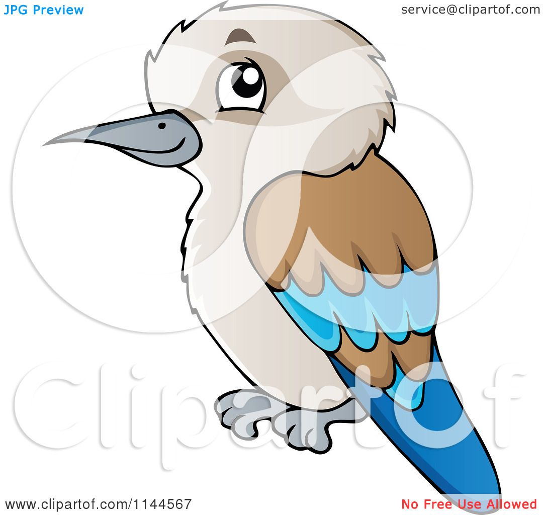 Kookaburra clipart #4, Download drawings
