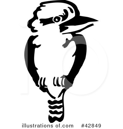 Kookaburra clipart #12, Download drawings