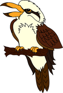 Kookaburra clipart #10, Download drawings