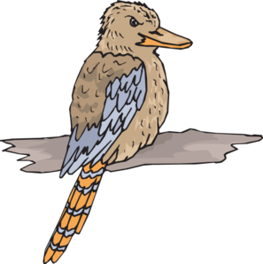 Kookaburra clipart #16, Download drawings