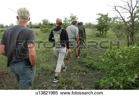 Kruger National Park clipart #5, Download drawings