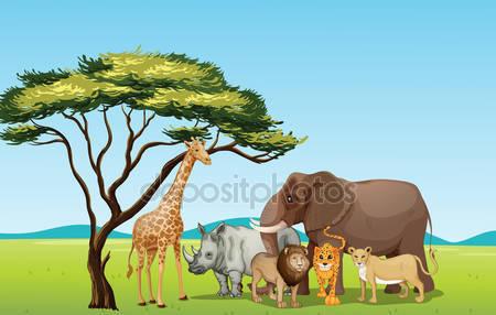 Kruger National Park clipart #14, Download drawings