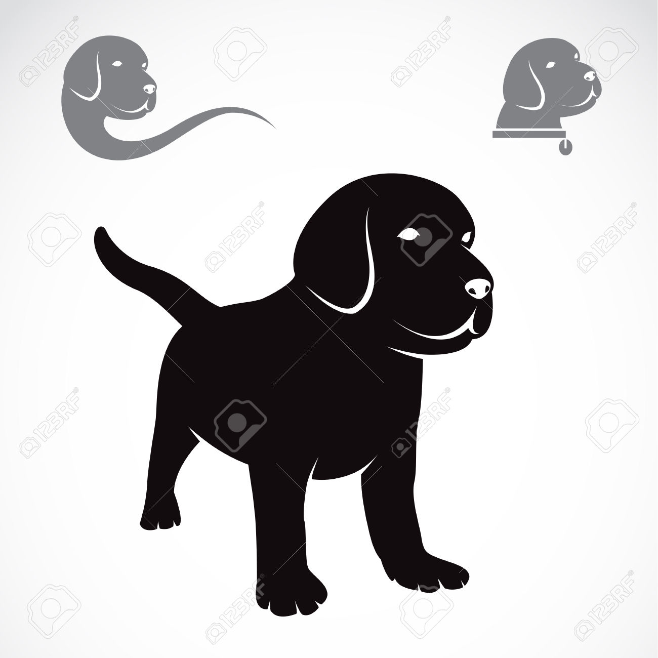 Labrador clipart #3, Download drawings