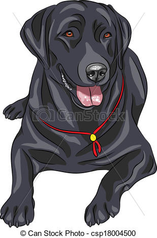 Labrador clipart #4, Download drawings