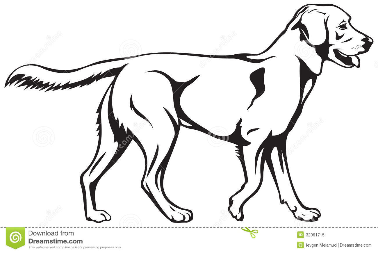 Labrador clipart #13, Download drawings