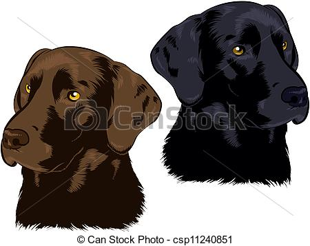 Labrador Retriever clipart #7, Download drawings