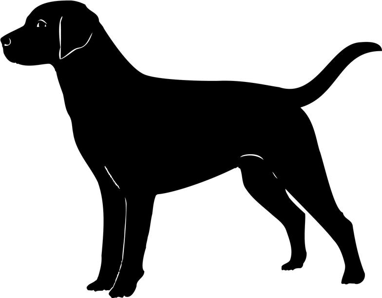 Retriever clipart #3, Download drawings