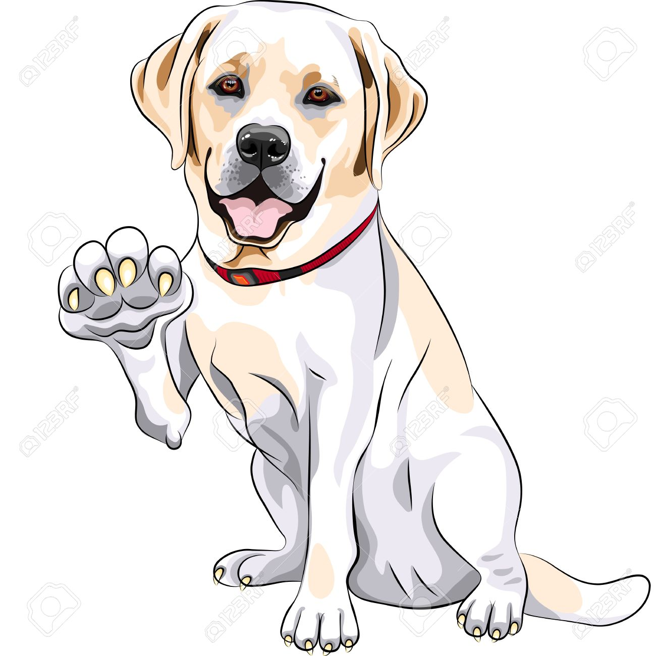 Labrador clipart #19, Download drawings