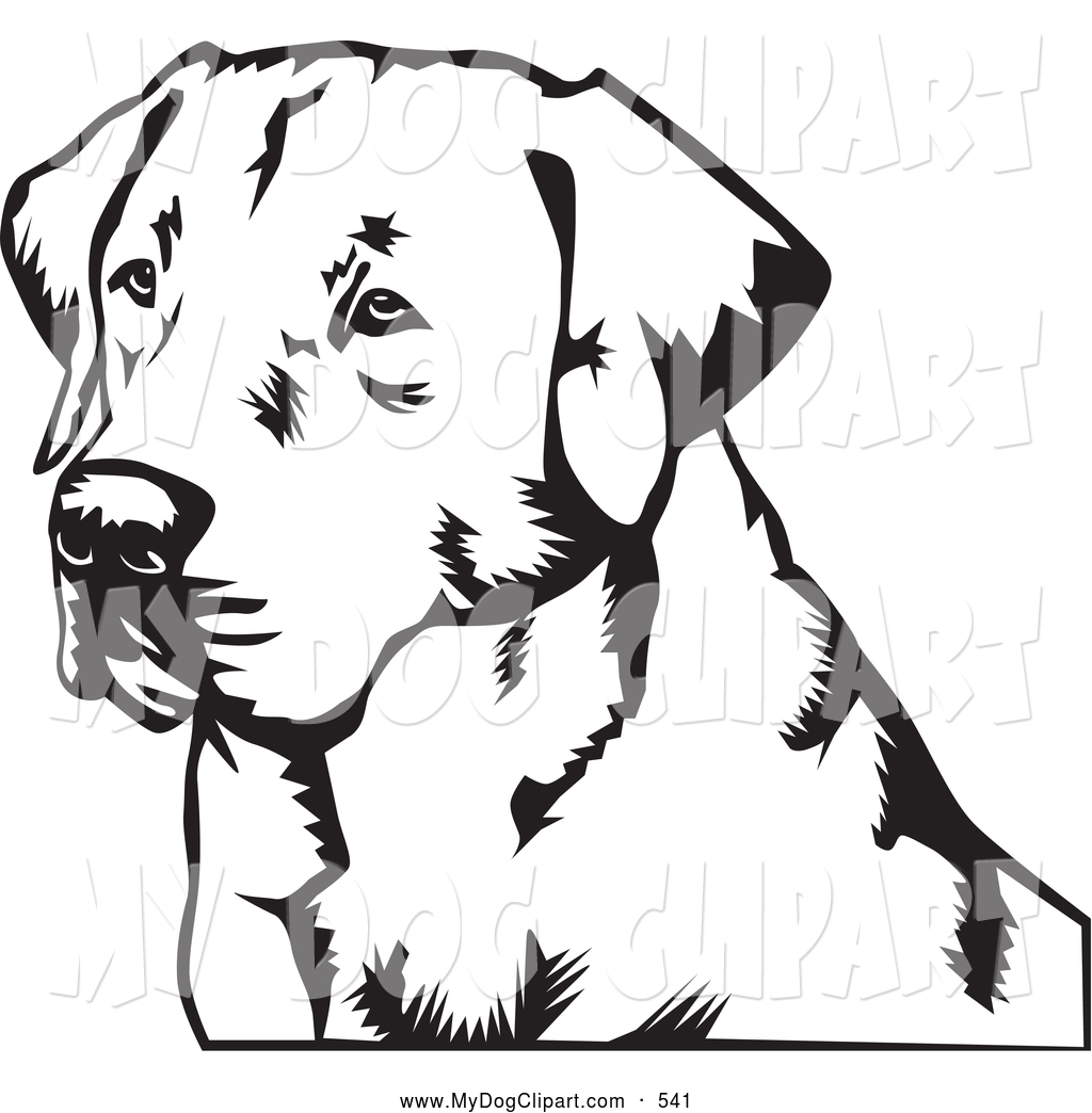 Labrador Retriever clipart #4, Download drawings