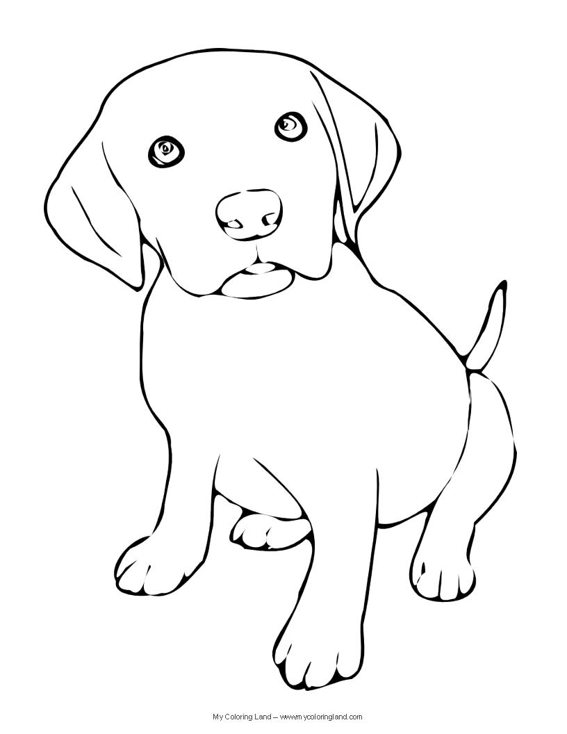 Labrador Retriever coloring, Download Labrador Retriever ...