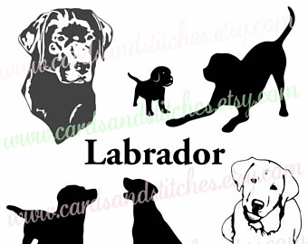 Labrador svg #11, Download drawings
