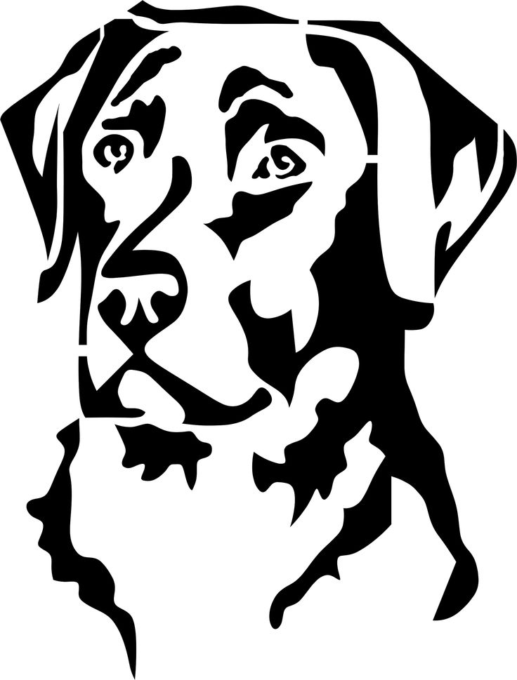 Labrador svg #3, Download drawings