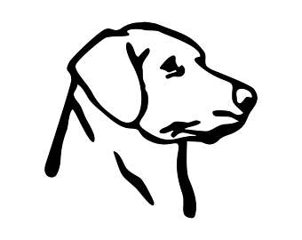 Labrador svg #15, Download drawings
