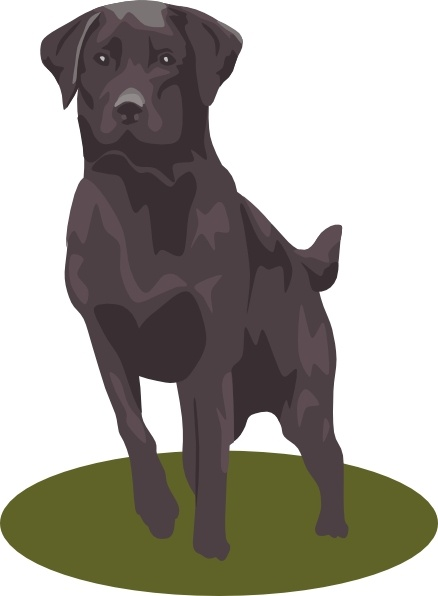 Labrador svg #13, Download drawings