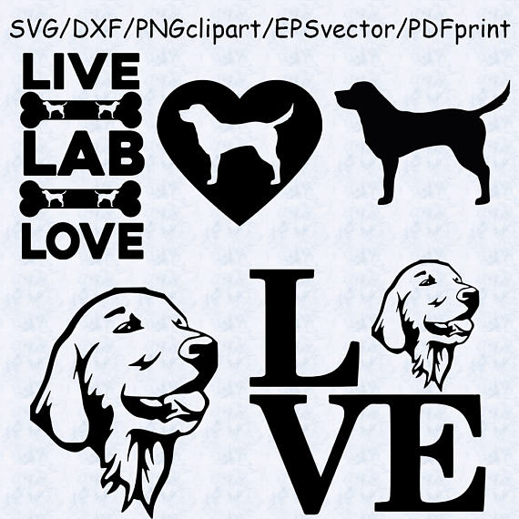 Labrador svg #20, Download drawings