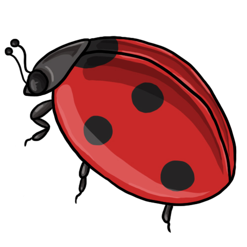 Ladybug clipart #10, Download drawings