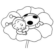 Ladybug coloring #1, Download drawings