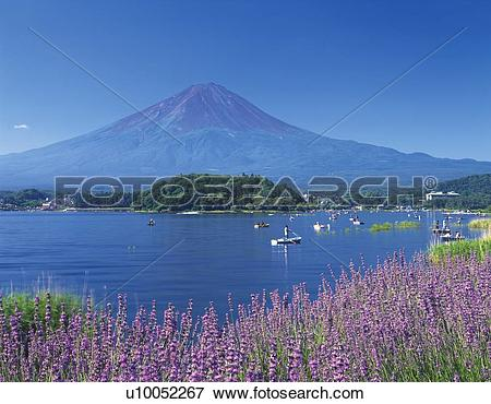 Yamanashi Prefecture clipart #5, Download drawings
