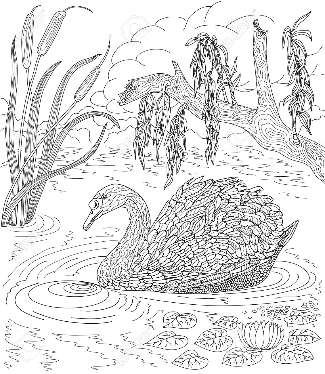 water coloring pages for adults - lake taupo coloring download lake taupo coloring