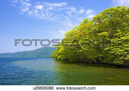 Lake Towada clipart #17, Download drawings