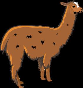 Lama clipart #11, Download drawings