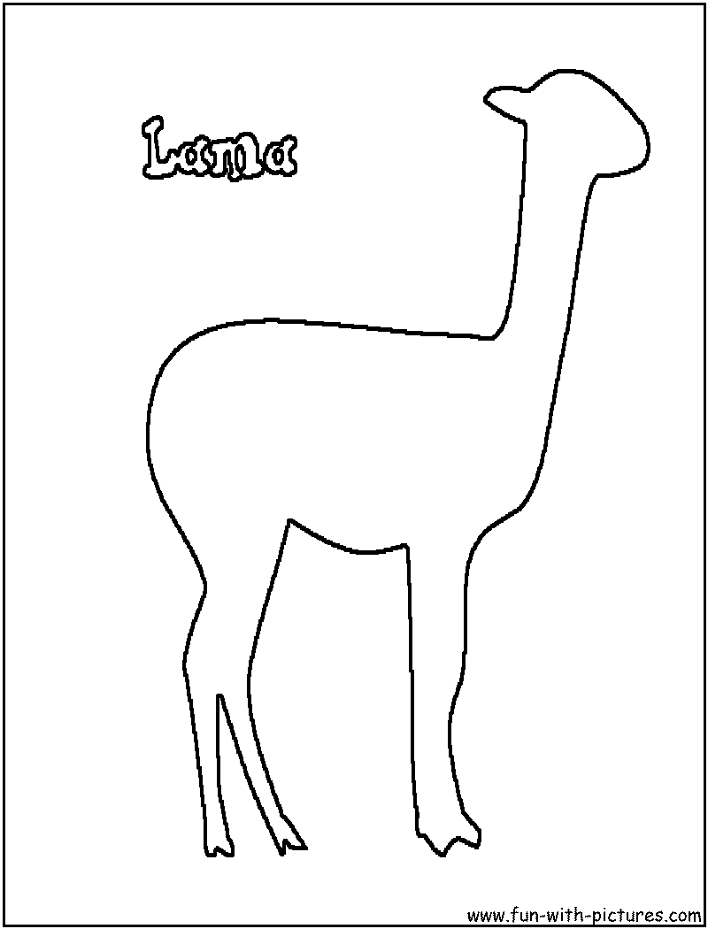 Lama coloring #14, Download drawings