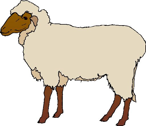 Lamb clipart #9, Download drawings