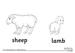Lamb coloring #12, Download drawings