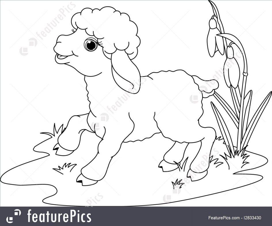Lamb coloring #7, Download drawings