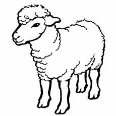 Lamb coloring #20, Download drawings