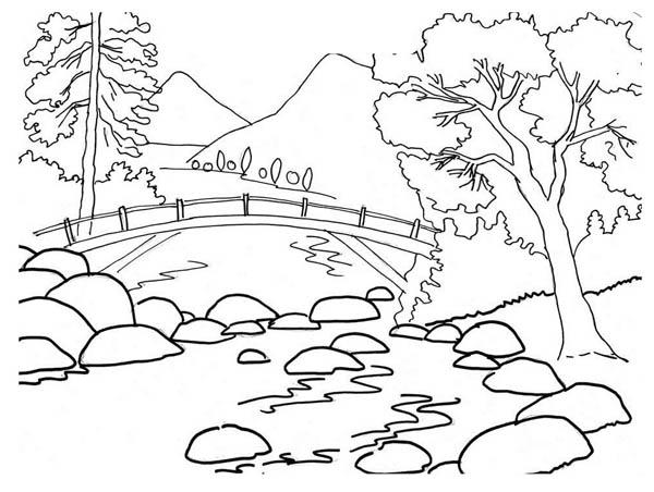 Natur coloring #2, Download drawings