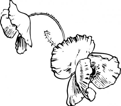Larkspur clipart #1, Download drawings