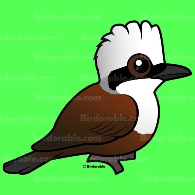 Laughningthrush clipart #11, Download drawings