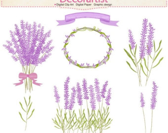 Lavender clipart #16, Download drawings
