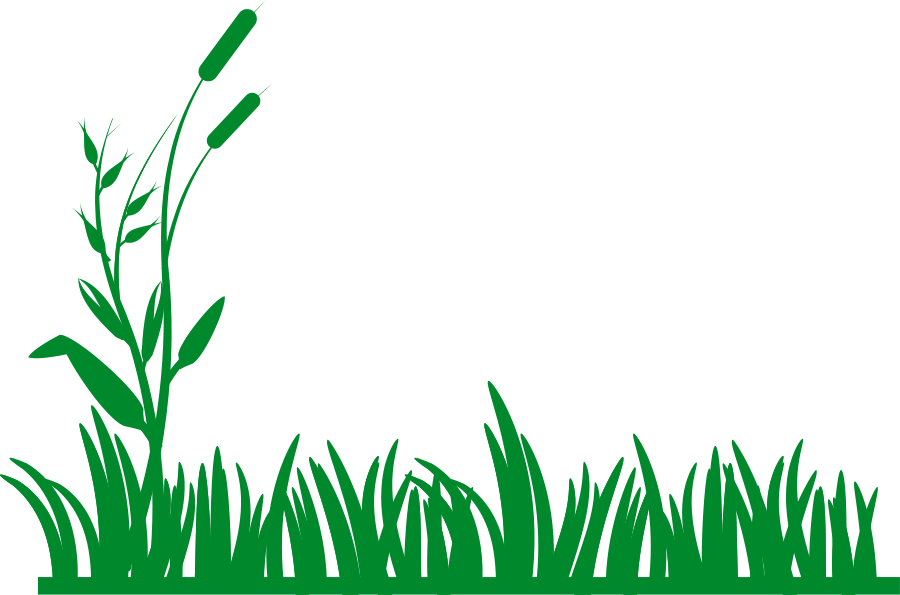 Lawn clipart #9, Download drawings