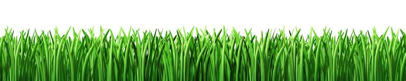 Lawn clipart #20, Download drawings