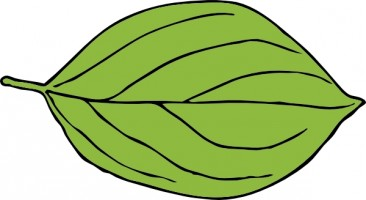 Leaf clipart #14, Download drawings