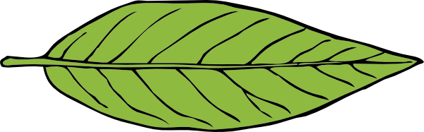 Leaf clipart #20, Download drawings